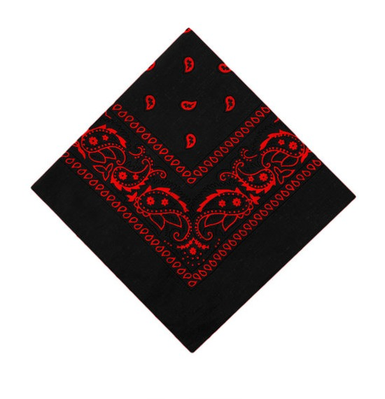 Black and Red Paisley Bandana