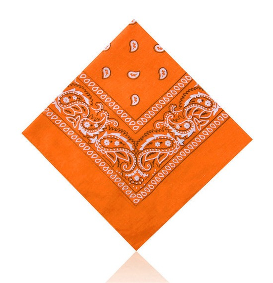Bright Orange Paisley Bandana