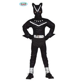 Black Feline Costume