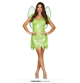 Magic Fairy Costume